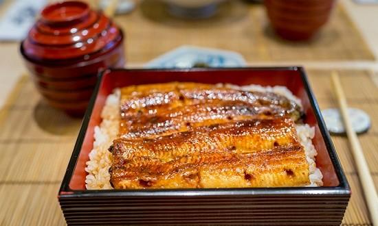日本鳗鱼苗价格十年涨了近8倍,未来可能被禁止贸易
